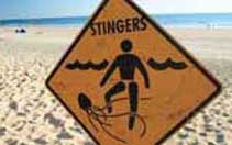 Another beach warning sign