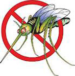 Mosquitoes cause West Nile Fever & West Nile Virus